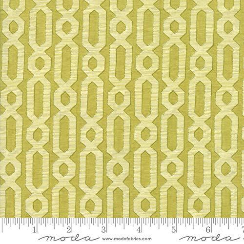 - Dandi Annie by Robin Pickens Quilt Fabric Chain Lattice Leaf Style 48634/17