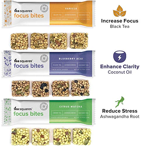 Energy Bites for Mental Energy, Focus, and Clarity (Variety Pack - 12 count) - 100 cal, 4g plant-protein, 3-4g sugar, Delicious Tasting, Protein Bars, Energy Bars, Gluten Free, Vegan - TeaSquares