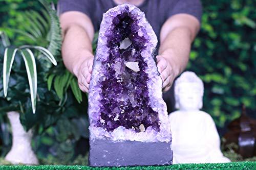 Amethyst Geode 13.50