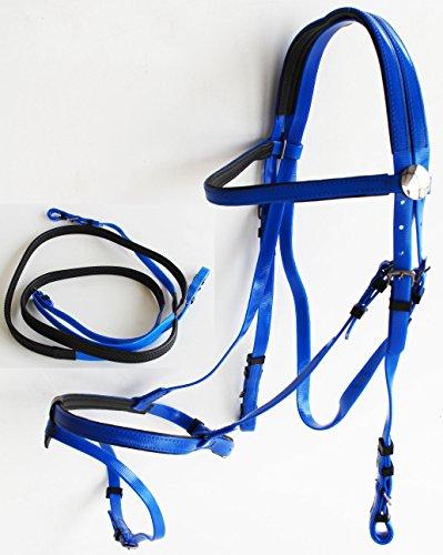 - ProRider Equine Horse Biothane English Bridle Noseband FlashTack Reins Blue 40HS71RB