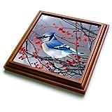 3dRose trv_259293_1 Blue Jay in Winterberry Bush Trivet with Tile, 8 by 8''