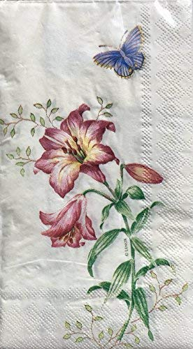 Lenox Fritillary Butterfly Meadow by CR Gibson Guest Dinner Napkins 32 Count