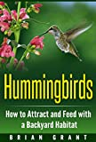 Hummingbirds: How to Attract and Feed with a Backyard Habitat