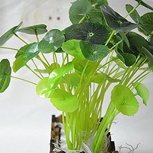 (5 Pcs- Artificial EVA Floating Foam Aquarium Foliage Floating Lotus Leaf Decor Pool Fish Tank Pond Leaves Home Garden Decor)