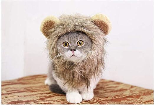 ZCNNO Peluca Melena de león for el Gato, Disfraces Divertidos de ...