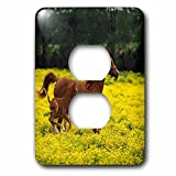 3dRose lsp_80234_6 Arabian Mare And Foal Horses 2 Plug Outlet Cover