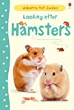 Looking After Hamsters (Usborne Pet Guides)