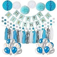 Frozen Theme White Blue Party Decorations girls Birthday Party Supplies, balloons, Pom Poms Flowers, birthday banner, paper Garland, Tassels 1st Birthday Girl Decorations Kids Birthday