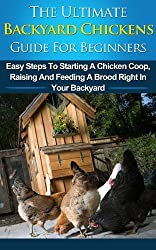 Backyard Chickens Guide For Beginners: Easy Steps To Starting A Chicken Coop, Raising And Feeding A Brood Right In Your Backyard (Choosing Coops, Chicken ... Chicks, Chicken Coops) (English Edition)