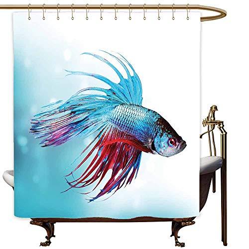 Sunnyhome Bathtub Splash Guard Aquarium Siamese Fighting Betta Fish Swimming in Aquarium Aggressive Sea Animal Art Print Polyester W108x72L Sky Blue Dark Coral