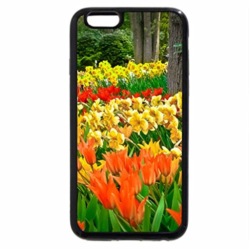 iPhone 6S / iPhone 6 Case (Black) Garden of beauty