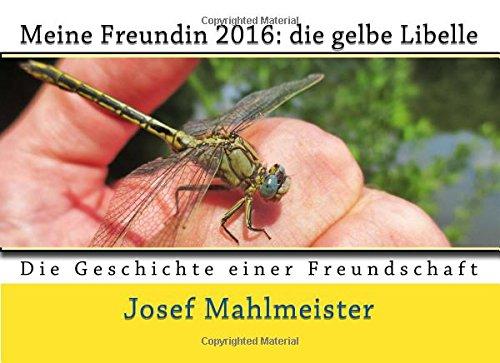 Meine Freundin 2016: die gelbe Libelle (Dragonflies, Band 3)