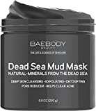 Facial Mask Oily Skin Dead Sea Mud Mask Best for Facial Treatment, Acne, Oily Skin & Blackheads - Minimizes Pores, Reduces Wrinkles, and Improves Overall Complexion. Natural-Minerals From The Dead Sea 8.8 oz
