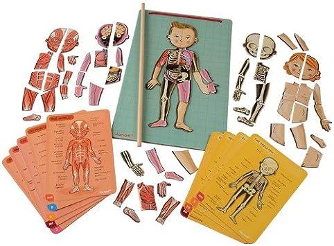 Janod- Imán Juego Educativo del Cuerpo Humano-Anatomía, Organos, Esqueleto, Músculos 76 Piezas Magnéticas-A Partir de 7 años-12 Lenguas, Multicolor (J05491): Amazon.es: Juguetes y juegos