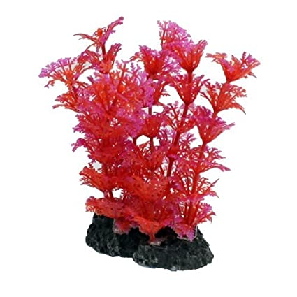 Amazon.com : eDealMax DE 5 piezas de plástico acuario Plant Decor, DE 4, 7 pulgadas, Rojo/Fucsia : Pet Supplies