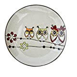 Bestcatgift Owl Pattern BoneChina Dinner Plate Ceramic Salad Dessert Plates,8 Inch, Multicolor Bone China Lunch Plates.