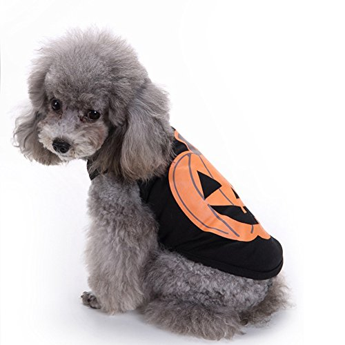SIMPLESTLIFE Pet Pumpkin Costume Dog Cosplay Puppy Clothes Cat Purp Winter Warm Coat for Halloween Christmas-S