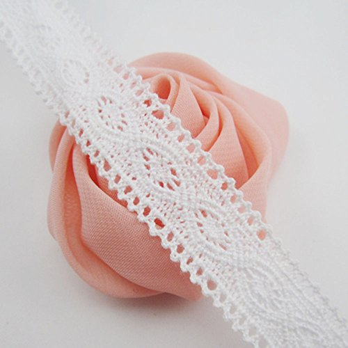 - Bluemoon 10 Yards - 20mm Cotton Ribbon lace Trim Dress Lace Trim Cotton Cluny Lace Embroidery White BA0008