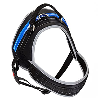 [Pet Industries] Heavy-Duty Dog Harness w/ Reflective Features [Premium Edition] Available in 4 Sizes, Specially Designed for Medium-Large Dog Breeds
