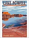 Lake Powell - Padre Bay (Playing Card Deck - 52 Card Poker Size with Jokers)