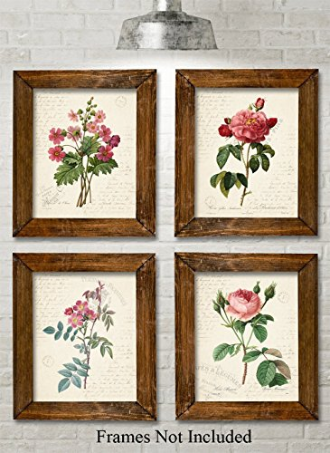 Paris Botanicals Art Prints - Set of Four Photos (8x10) Unframed - Great for Bedroom / Bathroom Decor (Pink Photo Great)