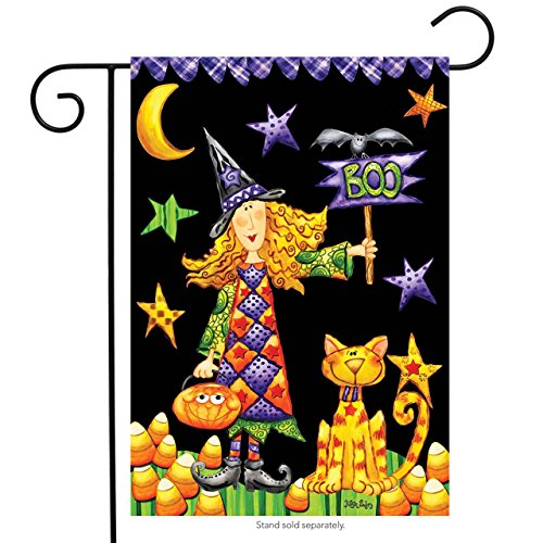 Boo Witch Halloween Garden Flag Primitive Holiday Briarwood Lane 12.5