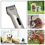 Wahl Professional Animal Arco Pet, Dog, Cat, and