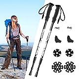 Trekking Poles,[2 Pack]-TOPELEK Collapsible Hiking or Walking Sticks for Man Woman - Strong,Antishock,Lightweight