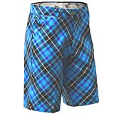 Royal & Awesome Men's Golf Shorts