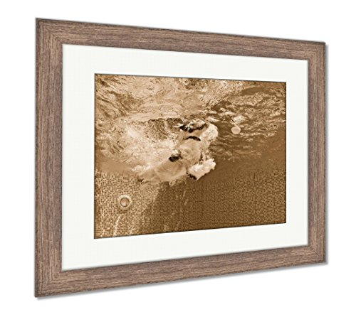 Ashley Framed Prints Playful Jack Russell Terrier Puppy In Swimming Pool Has Fun Dog Jump And Dive, Wall Art Home Decoration, Sepia, 34x40 (frame size), Rustic Barn Wood Frame, AG4998001 - Jack Russell Terrier Puppies Pictures