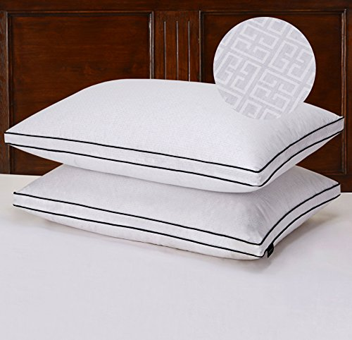 Basic Beyond Greek Key Patterns Gusseted, Triple Compartment, 650 Fill Power Egyptian Cotton King Goose Down Pillow White, Set of 2