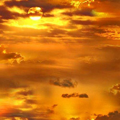 Golden Sunrise Scene, Landscape Fabric, Elizabeths Studios, 326E-GLD, by The Yard