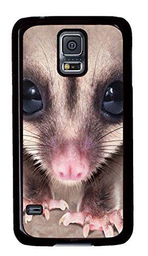 Big Face Sugar Glider Polycarbonate Hard Case Cover for Samsung Galaxy S5 Black (Sugar Glider Iphone 4s Case)