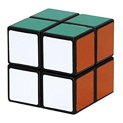 Shengshou 2x2x2 Puzzle Cube, Black: Toys & Games