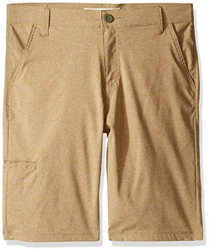 Levi's Boys' Big 511 Slim Fit Lightweight Stretch Shorts, Incense, 16 ()