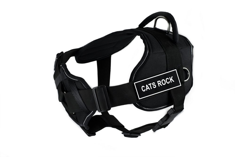 Dean & Tyler 28 to 34-Inch Cats Rock Fun Harness with Padded Chest Piece, Medium, Black
