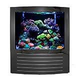 100 gallon fish tank - Triton Cynthia - 430 Gallon Aquarium - Black by Triton Aquariums