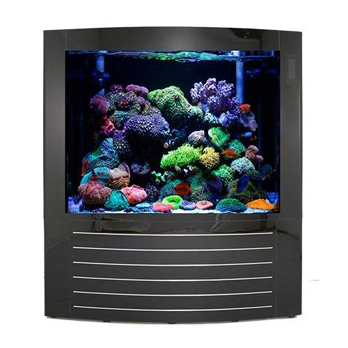500 gallon fish tank - 1