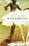 img - for Black Mamba Boy: A Novel book / textbook / text book