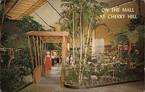 Cherry Hill Shopping Center Cherry Hill, New Jersey Original Vintage - Hills Center Shopping Cherry