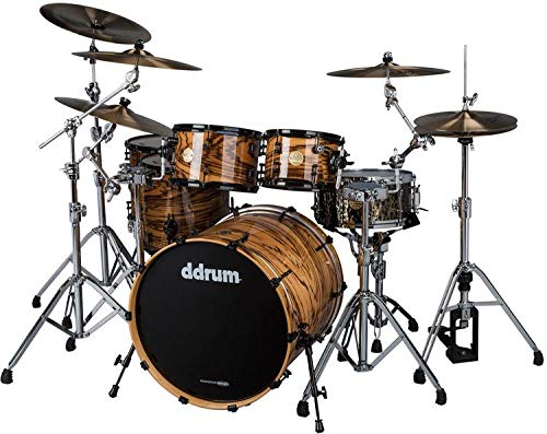 ddrum Dios Exotic Zebra Wood- Natural 5-piece Drum Set