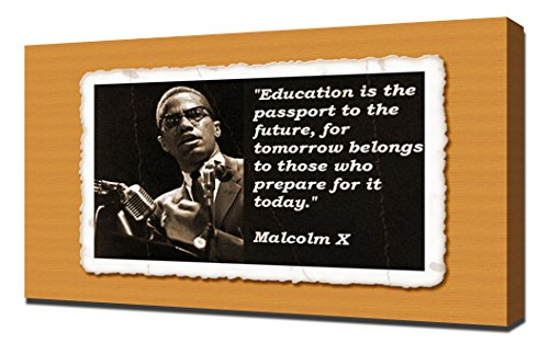 malcolm x poster quotes