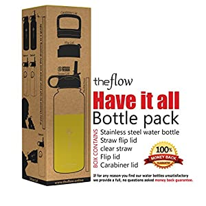 The Flow Stainless Steel Water Bottle, Double Walled/Vacuum Insulated - BPA/Toxin Free – Wide Mouth with Straw Lid (Stainless Yellow)