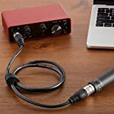 Amazon Basics XLR Male to Female Microphone Cable