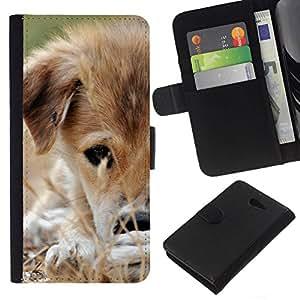 All Phone Most Case / Oferta Especial Cáscara Funda de cuero Monedero Cubierta de proteccion Caso / Wallet Case for Sony Xperia M2 // Mongrel Puppy Brown White Grass Dog