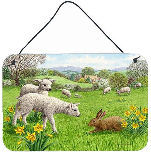 Caroline's Treasures Lambs, Sheep and Rabbit Hare Wall or Door Hanging Prints ASA2179DS812 8HX12W Multicolor ()