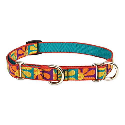 """LupinePet Originals 3/4"""" Crazy Daisy 10-14"""" Martingale Collar for Small Dogs"""