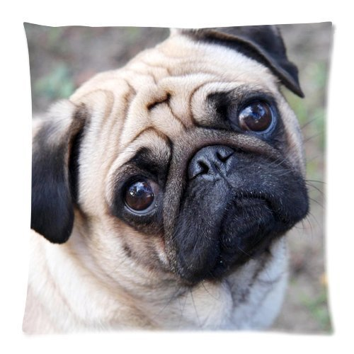 Charming Pug Dog Custom Zippered Pillow Case 18x18 (one side) Pillow18-342