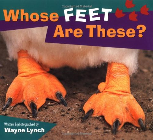 Whose Feet Are These Animal product image