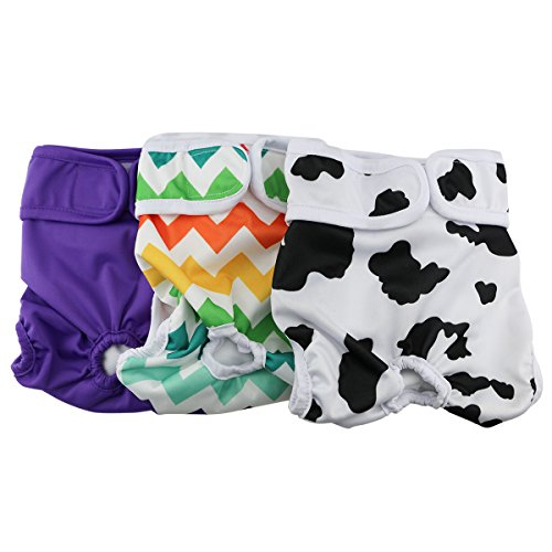 Hi Sprout Female Dog Diaper Reusable Washable Durable Absorbent Cloth Doggie Diapers Pants m2 (Clothes Dogs)